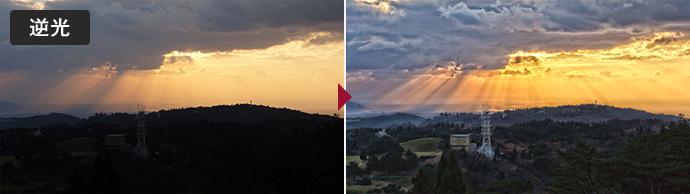 画像取込鮮明化ソフト LISr-Capture 鮮明化処理例 逆光